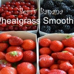 Healthy Living: Berry Banana (Activz Wheatgrass) Green Smoothie