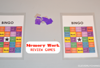 Homeschooling is Fun: 10 Memory Work Review Games