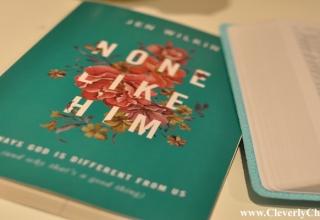 None Like Him by Jen Wilkin #bookreview
