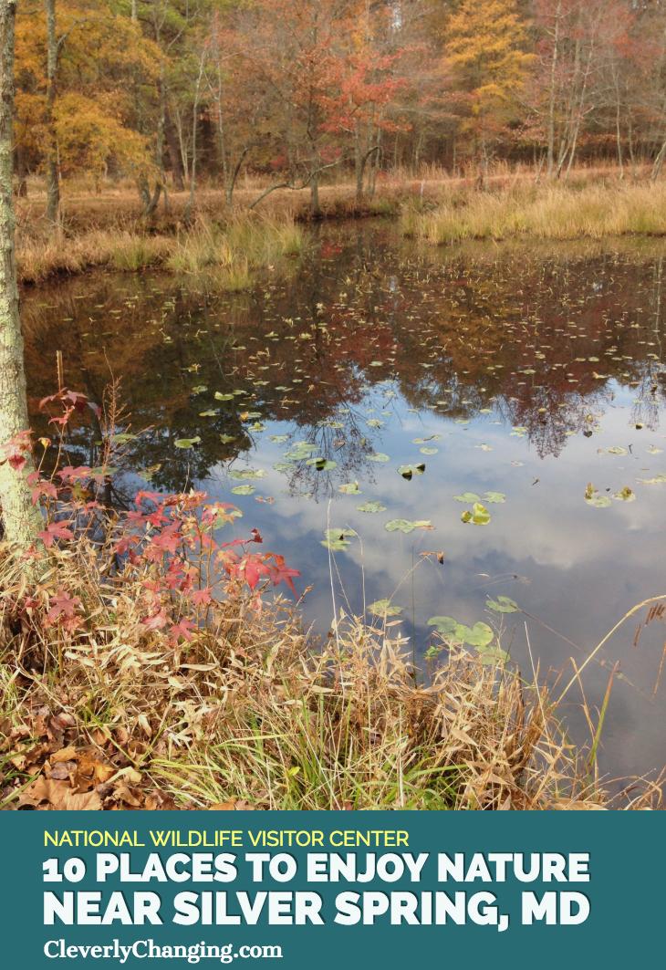 Nature Places to visit Patuxent Wildlife Center