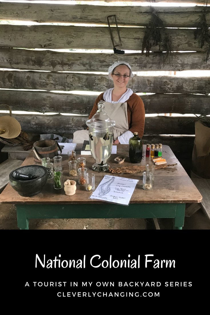 Interactive learning kitchen and remedies a reenactment at the National Colonial Farm