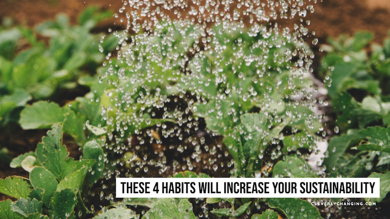 These 4 Habits Will Increase Your Sustainability | watering a plant