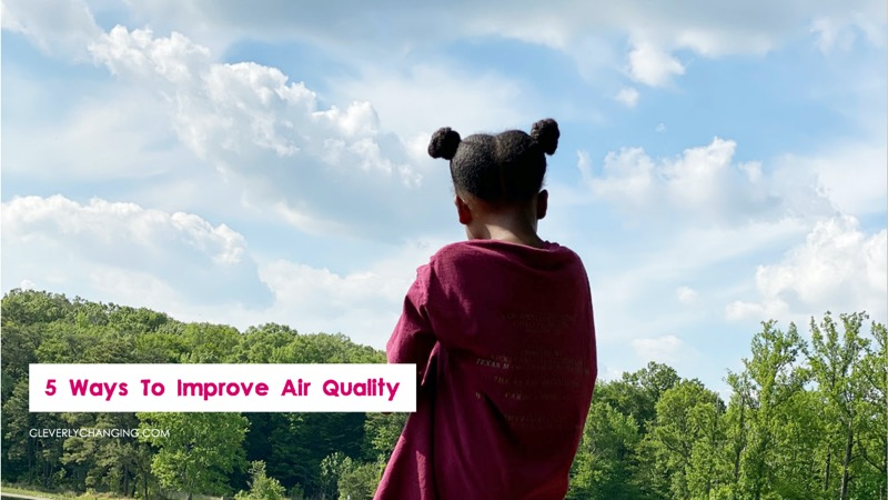 5 ways to improve air quality